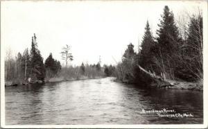 Traverse City Michigan~Boardman River Bends~Evergreen Trees~1950s RPPC