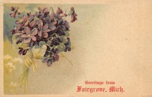 Fairgrove Michigan~Greetings~Violets Flower Bouquet~Embossed PFB 1909 Postcard