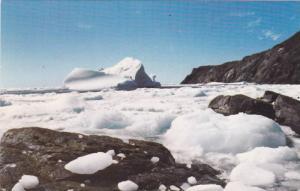 St. Anthony Point, Northern Newfoundland, Canada, 1974