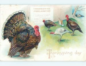 Divided-Back thanksgiving tuck TURKEYS BESIDE AXE AND CHOPPING BLOCK o4833
