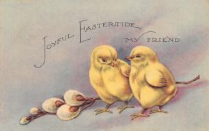 Easter~My Friend~Two Chicks Walk~Pussy Willows~Gibson Art Lines~c1910 Postcard