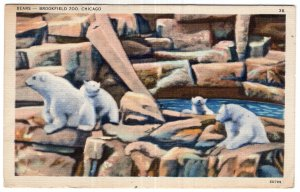 Chicago, Bears - Brookfield Zoo