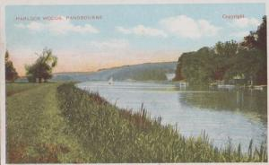 Harlock Woods Pangbourne Blowy Day Sailing Boats Antique Berks Postcard