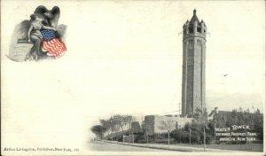 Brooklyn NY Water Tower Prospect Park c1900 Arthur Livingston Postcard