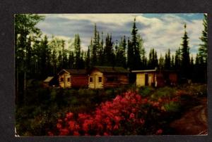 AK Border City Alaska Highway Hwy Postcard Alcan PC Carte Postale