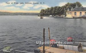 View of White Lake White Lake NY Unused
