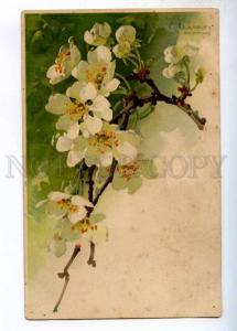 245357 APPPLE Flowers Tree by C. KLEIN Vintage POST OZERKI PC