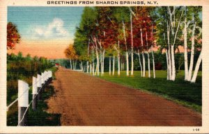 New York Greetings From Sharon Springs 1944