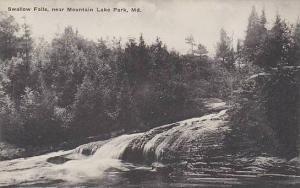 Maryland Mountain Lake Park Swallow Falls Albertype