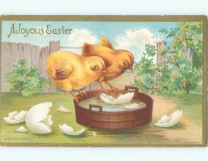 Divided-Back EASTER CHICK SCENE Cute Postcard AA0729