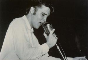 Elvis Presley - Performing at a 1956 Concert