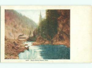 Divided-back RIVER SCENE Eagle River Canyon - Near Vail Colorado CO AE6635