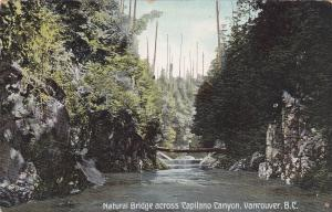 VANCOUVER, British Columbia, Canada, 1900-1910´s; Natural Bridge Across Capilano
