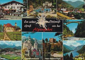Greetings Gruss Von Der Alpenfahrt Echter Edelweiss