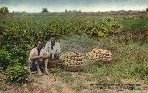 formosa taiwan, Farmers in the Melon Field (1930s) Postcard
