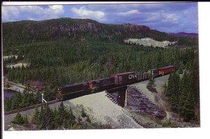 Trinity Loop, Narrow Gauge Train on Bridge,  Newfoundland