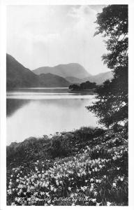 Wordsworth's Daffodils by Ullswater Lake Lac