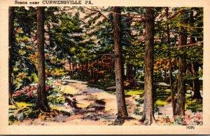 Pennsylvania Scene NEer Curwensville
