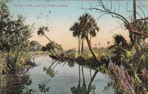 Florida Daytona Scene Along Tomoka Creek 1911