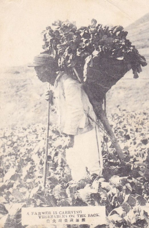JAPAN, 00-10s; Farmer Carrying Vegetables on his back