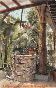 Riverside California~Saint Catherine's Well @ Mission Inn~Banana Tree~1909 Pc