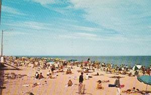 Delaware Greetings From Rehoboth Beach Sunbathers