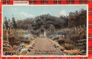 Scotland, UK Old Vintage Antique Post Card The Rose Avenue Gardens Rouken Gle...