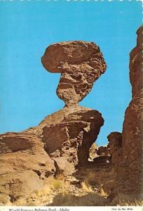Balance Rock - Idaho