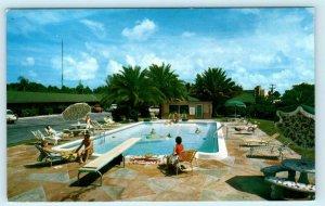 CLEARWATER, Florida FL ~ Roadside PHILLIPS MOTEL 1960 Cars,  Pool Postcard