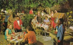 Jamaica Montego Bay Dining In The Garden At Harmony House Hotel