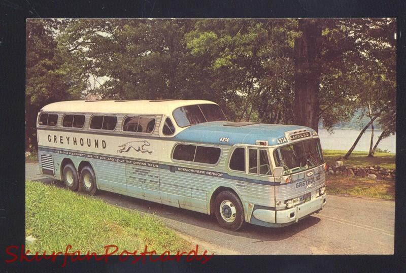 GREYHOUND BUS LINES VINTAGE BUS SCENICRUISER OLD POSTCARD