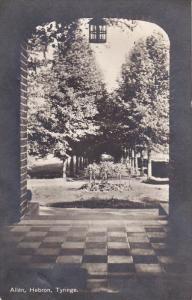 RP: Allen, Hebron, Tyringe, Sweden , PU-1914