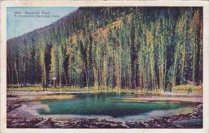 Wyoming Yellowstone National Park Emerald Pool 1948