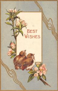 Fat Brown Birds on Pink Flowering Branch~Gold Squiggles on Olive Green~Embossed