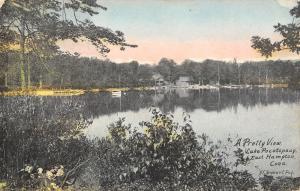 East Hampton Connecticut~Lake Pocotopaug~Cabins & Docks Along Shoreline~1910