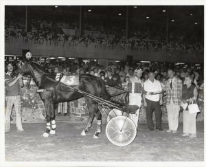 SARATOGA Raceway Harness Horse Race , GRACIOUS TATLER wins 1976