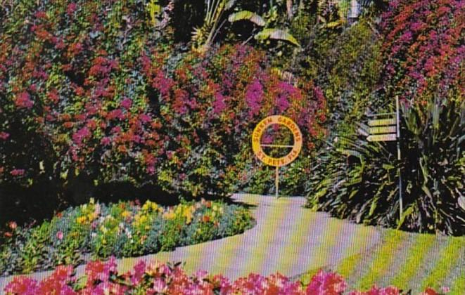 Florida St Petersburg Sunken Gardens Flower Bordered Scenic Path