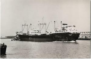 Linzertor New York Harbor Ship Nautica Real Photo Postcard 01.21