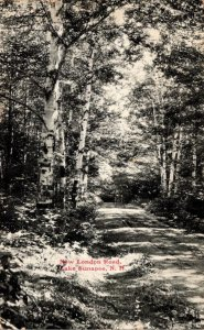 New Hampshire Lake Sunapee New London Road 1908