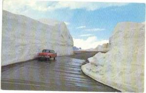 Huge Snow Banks on Beartooth Hwy in June Montana MT 1966