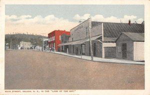 Saluda North Carolina Main Street Saluda Plumbing Co Vintage Postcard JI658396