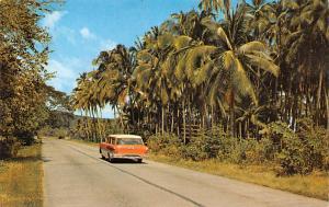 Panama Old Vintage Antique Post Card Interamerican Highway Republic of Panama...