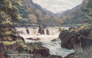 TUCK #7742; CARDIGANSHIRE, Wales, UK, 00-10s; The Cenarth Falls