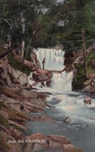 New York Annsville Cedar Falls