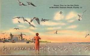 Florida Daytona Beach Dinner Time For The Sea Gulls