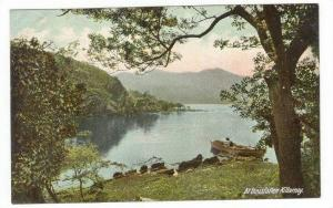 At Innisfallen Killarney, Ireland, 00-10s