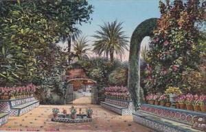 SEvilla , Spain, 00-10s ; Alcazar. Jardines