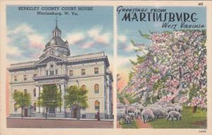 West Virginia Greetings From Martinsburg Showing Berkeley County Court House