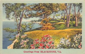 Blackstone Virginia~Flowers & Trees Along Lake~1949 Linen Postcard