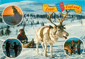 Ethnic Postcard Suomi Finland Lappi Lapland red traditions reindeer